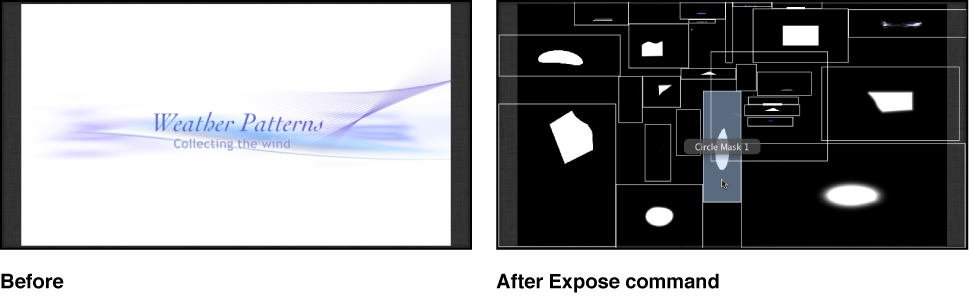 Canvas showing the effect of the Expose All Layers command