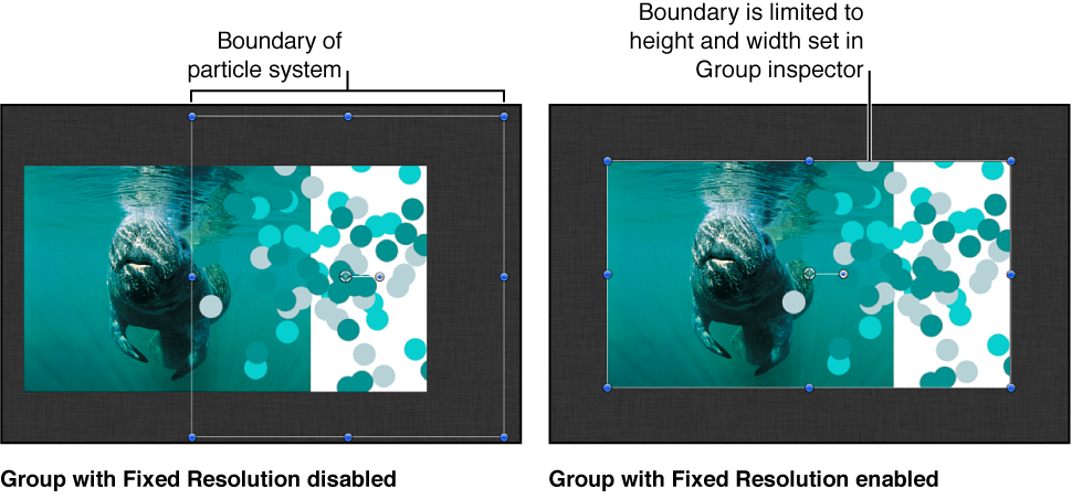Canvas window showing default size of a group containing particles