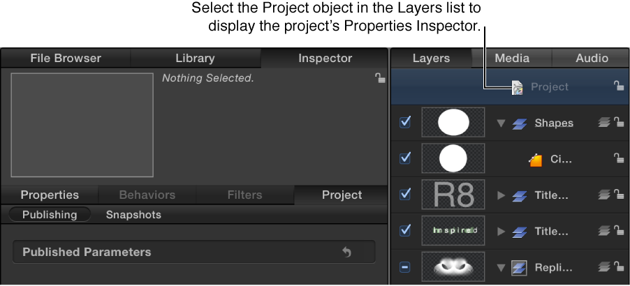 Project object selected in Layers list