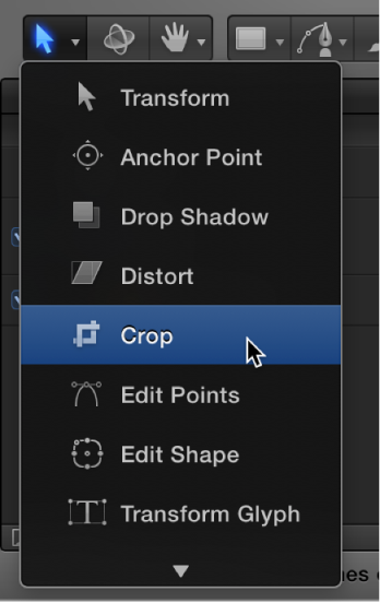 Selecting the Crop tool from the 2D transform tools pop-up menu