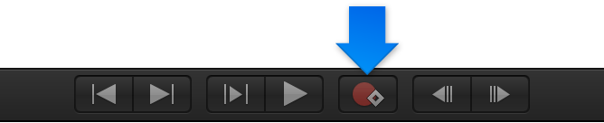 Record button in Canvas window transport controls