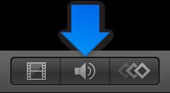 Show Audio button