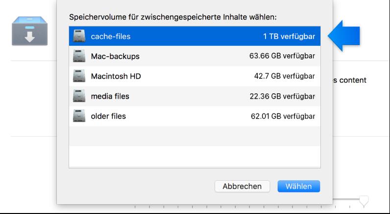 """Bildschirmfoto der Einstellungen für den Dienst """"Caching"""""""