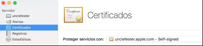 Certificados seleccionados en Server