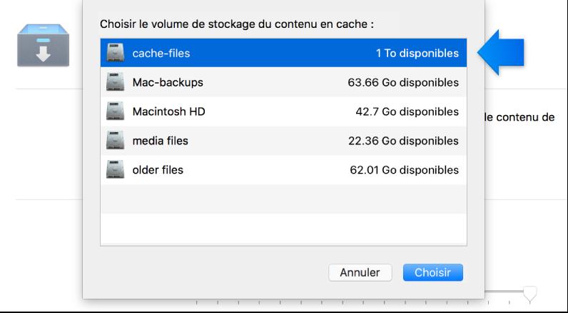 Capture d'écran des réglages du service de mise en cache