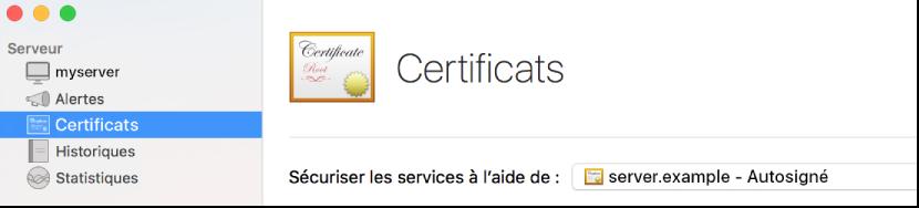 Certificats sélectionnés dans Server