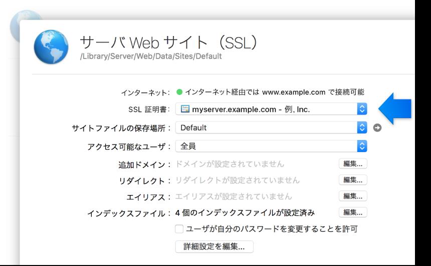 SSL Web サイトの設定