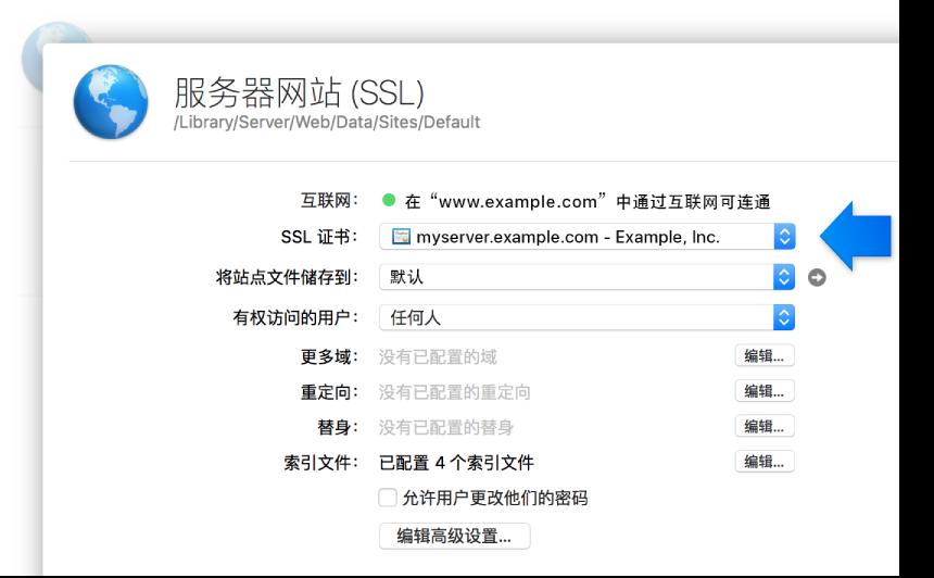 SSL 网站设置