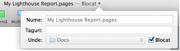 Pop-up pentru blocarea sau deblocarea unui document