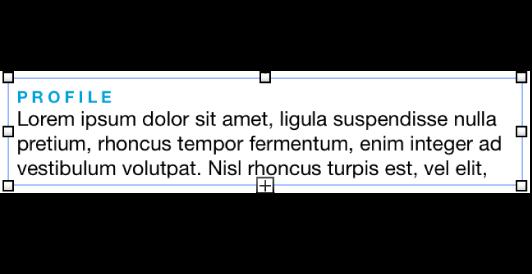 文字框,其中顯示選取矩形和剪裁指示器。