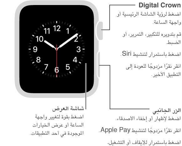 الجزء الأمامي لـ Apple Watch مع وسيلة شرح لزر الشاشة الرئيسية/Digital Crown: اضغط لرؤية الشاشة الرئيسية أو واجهة الساعة. انقر نقرًا مزدوجًا للعودة إلى التطبيق الأخير. اضغط باستمرار لتنشيط Siri. قم بتدويره للتكبير، التمرير، أو الضبط. وسيلة الشرح التالية للزر الجانبي: اضغط لإظهار أو إخفاء Friends. انقر نقرًا مزدوجًا لتنشيط Apple Pay. اضغط باستمرار للإيقاف أو التشغيل. وسيلة الشرح الثالثة لشاشة العرض: اضغط لتغيير واجهة الساعة. في أي تطبيق، اضغط لرؤية الخيارات.