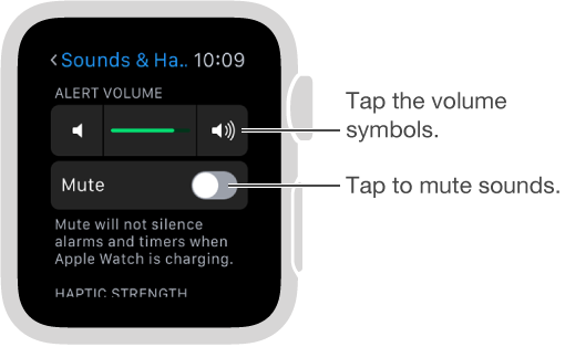 Sounds & Haptics settings screen on Apple Watch. Turn the Digital Crown or tap the volume symbols to increase or decrease the volume of ringers and alerts. Tap Mute to mute Apple Watch.