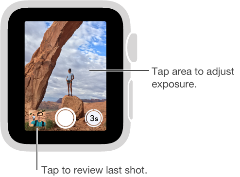 When looking at the camera Remote viewfinder on Apple Watch, the Take Picture button is bottom center with the Take Picture After Delay button to its right. If you've taken a photo, the Photo Viewer button is in the lower left.