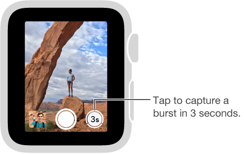 When looking at the camera Remote viewfinder on Apple Watch, the Timer button is in the bottom right.