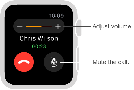Screen showing an incoming phone call, where you can adjust the volume or mute the call.