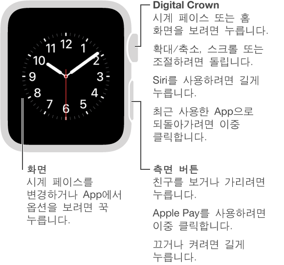 Digital Crown/홈 버튼에 대한 설명 풍선이 있는 Apple Watch의 앞면입니다. 시계 페이스 또는 홈 화면을 보려면 누릅니다. 최근 사용한 App으로 되돌아가려면 이중 클릭합니다. Siri를 사용하려면 길게 누릅니다. 확대/축소, 스크롤 또는 조절하려면 돌립니다. 두 번째 설명 풍선은 측면 버튼에 대한 것입니다. 친구를 보거나 가리려면 누릅니다. Apple Pay를 사용하려면 이중 클릭합니다. 끄거나 켜려면 길게 누릅니다. 세 번째 설명 풍선은 화면에 대한 것입니다. 시계 페이스를 변경하려면 누릅니다. App에서 옵션을 보려면 누릅니다.