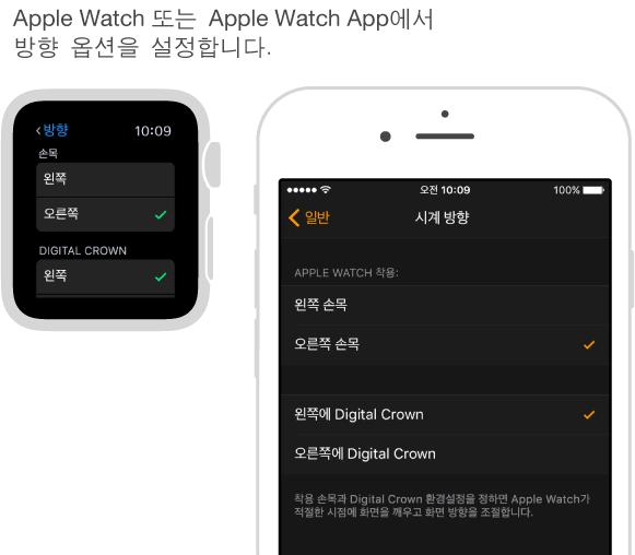 Apple Watch의 방향 설정이 표시된 화면과 iPhone에서 Apple Watch App의 동일한 설정이 표시된 화면이 나란히 있습니다. 손목 및 Digital Crown 환경설정을 설정할 수 있습니다.