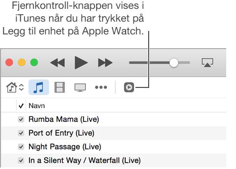 Fjernkontroll-knappen i iTunes vises når du prøver å legge til biblioteket på Apple Watch.