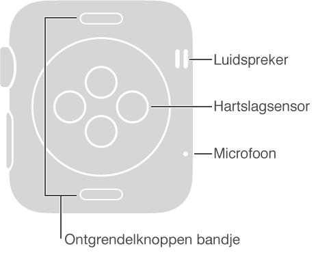 Achterzijde van de AppleWatch, met de volgende bijschriften voor de kant aan de andere zijde van de DigitalCrown: Luidspreker en microfoon. Bijschrift voor de knoppen boven en onder op de achterzijde: Ontgrendelknoppen voor het bandje: Druk erop om het bandje uit de gleuf te schuiven. Bijschrift voor de verhoogde ronde schijf midden op de achterzijde: Hartslagsensor en oplaadconnector.