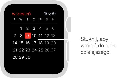 Widok miesiąca, zawierający pełny kalendarz miesiąca oraz dzień dzisiejszy zaznaczony na czerwono. Aby powrócić do dziennej listy wydarzeń, stuknij wdowolne miejsce ekranu.