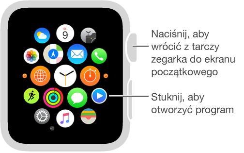 Ekran początkowy AppleWatch, na którym możesz otwierać programy, stukając wich ikony. Aby przejść do ekranu początkowego, jeśli zegarek wyświetla tarczę, naciśnij Digital Crown.