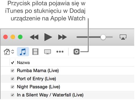 Przycisk pilota wiTunes pojawia się, gdy próbujesz dodać bibliotekę iTunes na AppleWatch.