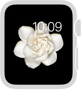 Estilo do relógio Movimento, onde é possível escolher o objeto em movimento e adicionar os seguintes recursos: data, com ou sem dia.
