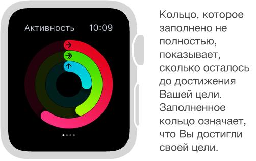 На превью «Активность» показаны цветные кольца. На них отображаются Ваши результаты по достижению ежедневных целей по движению, упражнениям и времени с разминкой.