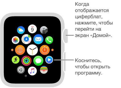 Экран «Домой» на AppleWatch; здесь нужно коснуться программы, чтобы ее открыть. Когда отображается циферблат, нажмите колесико DigitalCrown, чтобы открыть экран «Домой».