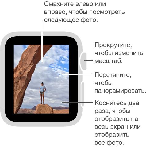 Во время просмотра фото, прокрутите колесико Digital Crown, чтобы изменить масштаб, перетяните, чтобы панорамировать, или дважды коснитесь, чтобы отобразить фото полностью или на весь экран. Смахните влево или вправо, посмотреть следующее фото.