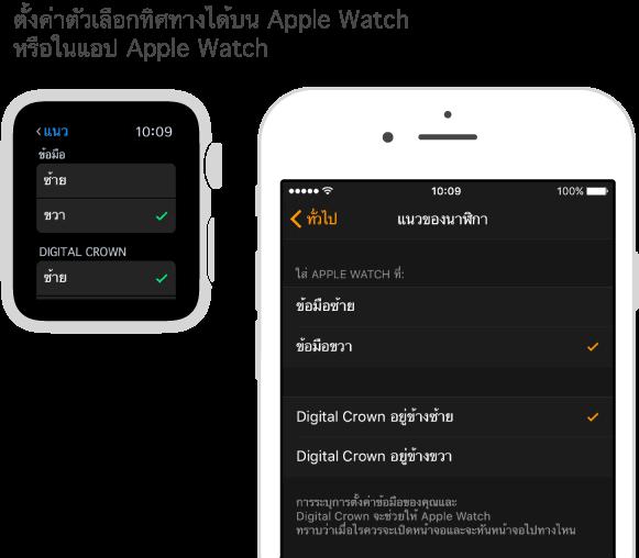 หน้าจอที่เรียงคู่กันซึ่งแสดงการตั้งค่าทิศทางใน APple Watch และการตั้งค่าเดียวกันในแอพ Apple Watch ใน iPhone คุณสามารถตั้งการตั้งค่าข้อมือและ Digital Crown ของคุณได้