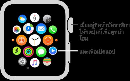 หน้าจอโฮมบน Apple Watch ซึ่งเป็นที่ที่คุณแตะแอพเพื่อเปิดแอพที่คุณต้องการ กด Digital Crown เมื่ออยู่ในหน้าปัดนาฬิกาเพื่อเปิดหน้าจอโฮม