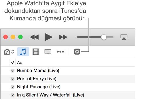 iTunes'da Kumanda düğmesi, Apple Watch'a arşiv eklemeye çalışırken görüntülenir.