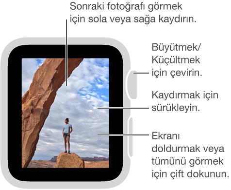 Bir fotoğrafı görüntülerken büyütmek veya küçültmek için Digital Crown'u çevirin, kaydırmak için sürükleyin veya fotoğrafın tümünü görüntülemek ile ekranı doldurmak arasında geçiş yapmak için çift dokunun. Sonraki fotoğrafı görmek için sağa veya sola kaydırın.