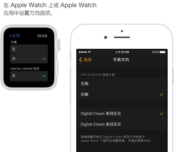 """并排显示的屏幕,一个显示 Apple Watch 上的""""方向""""设置,另一个显示 iPhone 上 Apple Watch 应用中相同的设置。 您可以设置佩戴手腕和 Digital Crown 表冠的偏好设置。"""