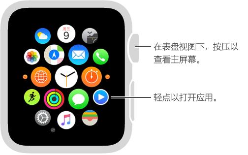 Apple Watch 的主屏幕,轻点其中的应用来打开。 在表盘视图下按一下 Digital Crown 表冠来打开主屏幕。