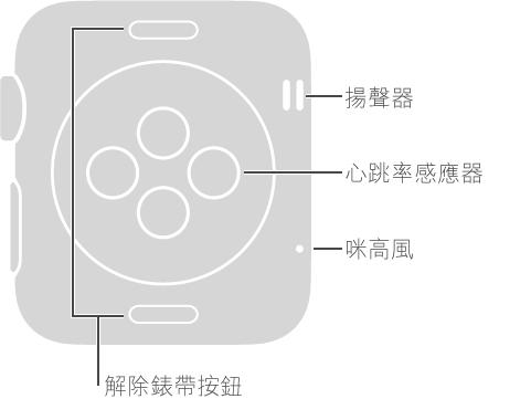 Apple Watch 的背面,這些說明文字位於與 Digital Crown 相對的一側: 揚聲器、咪高風。 錶背最上方與最下方按鈕的說明文字: 解除錶帶按鈕: 按一下滑出錶帶。 錶背中央盤狀凸起區域的說明文字: 心跳率感應器及充電板。