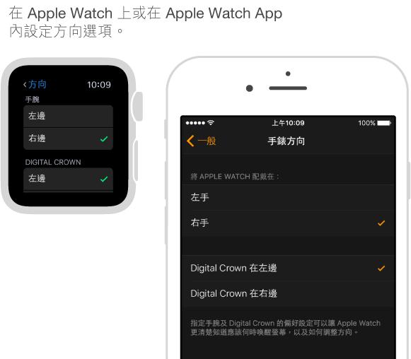 併排的螢幕顯示 Apple Watch 上的「方向」設定,以及 iPhone 上 Apple Watch App 中的相同設定。 你可以設定手腕及 Digital Crown 偏好設定。