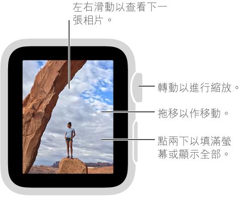 在檢視相片時,轉動 Digital Crown 縮放,拖移以移動,或點兩下以在檢視所有相片及填滿螢幕之間切換。 左右滑動以查看下一張相片。