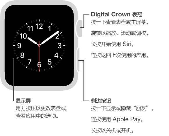 "Apple Watch 正面,包含 Digital Crown 表冠/主屏幕按钮标注: 按一下查看表盘或主屏幕。 连按返回上次使用的应用。 长按开始使用 Siri。 旋转来缩放、滚动或调整。 第二个标注为侧边按钮: 按一下显示或隐藏""朋友""。 连按使用 Apple Pay。 长按来关机或开机。 第三个标注指向屏幕: 按压来更改表盘。 在应用中,按压来查看选项。"