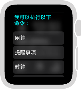 Siri 会以滚动列表的形式显示您可以轻点的主题类别按钮示例。