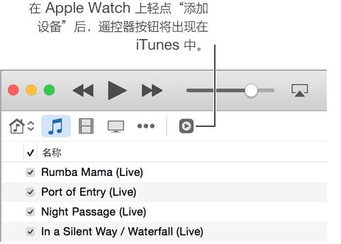 """当您尝试将资料库添加到 Apple Watch 时,iTunes 中的""""遥控器""""会出现。"""