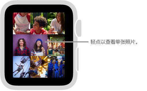 """在""""照片""""应用中,轻点精选中的任意照片进行查看。 旋转 Digital Crown 表冠从特定照片缩回来查看精选照片。"""