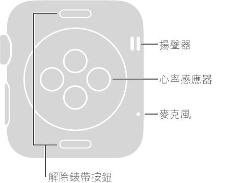 Apple Watch 的背面,這些說明文字位於與 Digital Crown 相對的一側: 揚聲器、麥克風。 錶背最上方與最下方按鈕的說明文字: 解除錶帶按鈕: 按下來滑出錶帶。 錶背中央盤狀凸起區域的說明文字: 心率感應器和充電板。