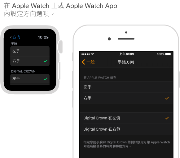 併排的螢幕顯示 Apple Watch 上的「方向」設定,以及 iPhone 上 Apple Watch App 中的相同設定。 您可以設定手腕和 Digital Crown 偏好設定。