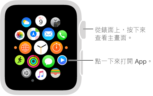 Apple Watch 上的主畫面,您可以在上面點一下 App 來打開。 從錶面按下 Digital Crown 來打開主畫面。