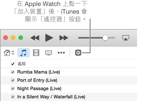 當您嘗試加入資料庫到 Apple Watch 時,「遙控器」按鈕會顯示在 iTunes 中。