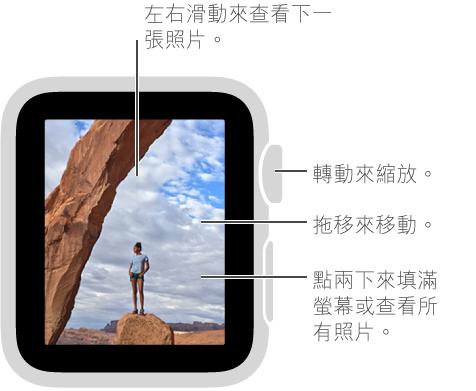 在檢視照片時,轉動 Digital Crown 來縮放,拖移來移動,或點兩下來在檢視所有照片和填滿螢幕之間切換。 左右滑動來查看下一張照片。